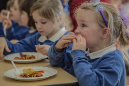Save school lunches petition breaks 50,000 mark