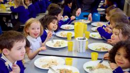Headteachers' save school lunches petition gathers momentum